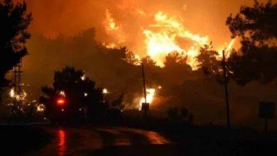 Photo of За фактом пожежі в Ізмірі затримано 1 особу